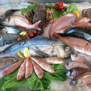 Seafood Cookery