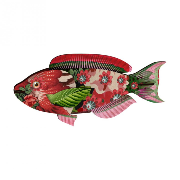 Fish – Abracadabra
